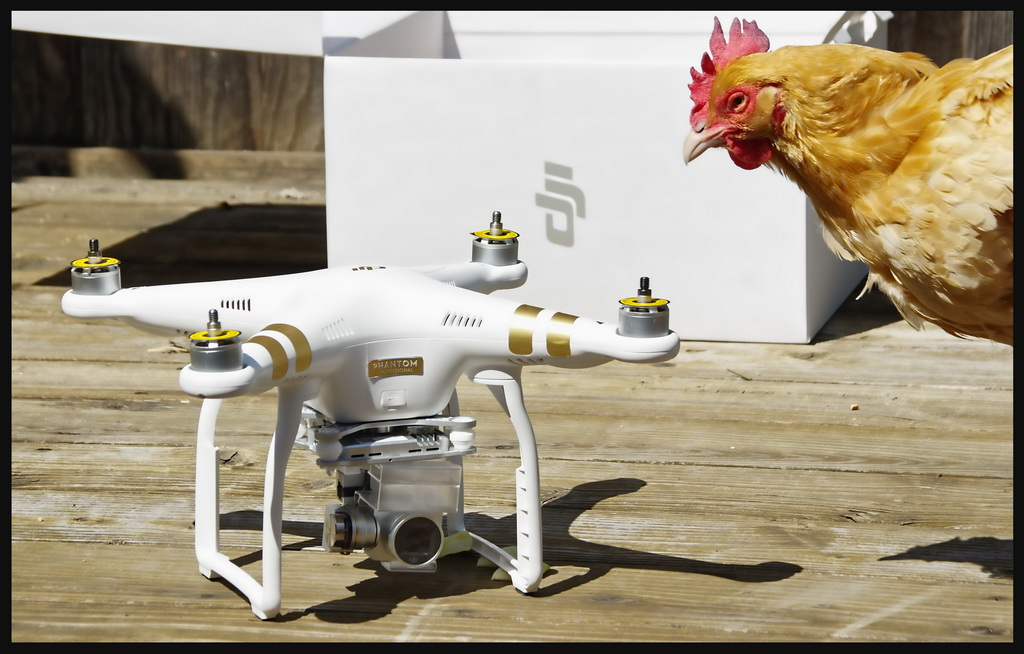 Phantom 3 Professional – A Closer Look at the Android Pilot App