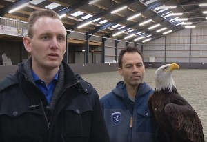 "Two Dutch bird trainers pose with one of the subjects of their ""Drone Defense Team"", a Bald Eagle."